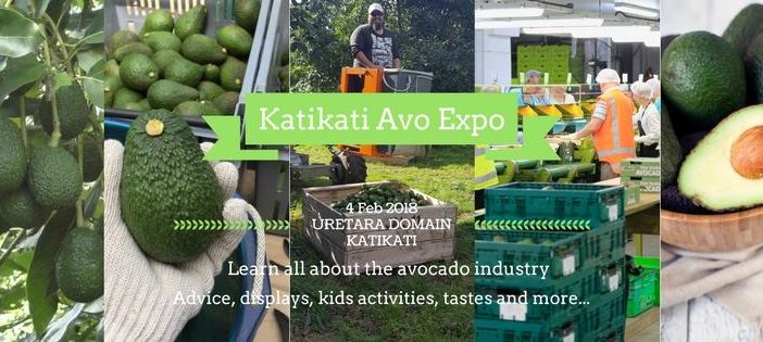Avos & Art in Katikati