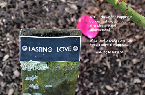 Walking to Nirvana: the poetry of Lee Switzer