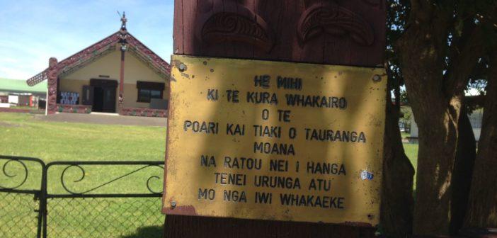 Tomorrow around Tauranga