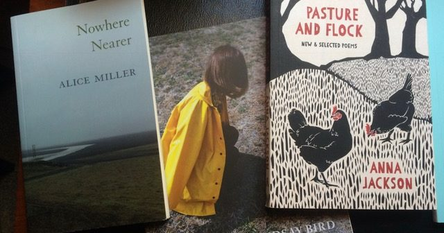 Marcus Hobson: Some recent New Zealand Poetry Collections